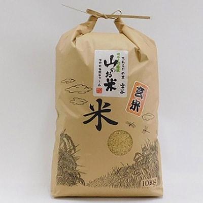 【ふるさと納税】大わらじの里 宮谷 山のお米 玄米【10kg】【1094455】