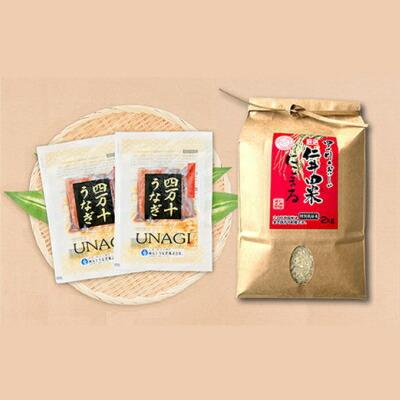 【ふるさと納税】Esu-73 四万十うなぎカット2袋+極上米2kgうな丼セット