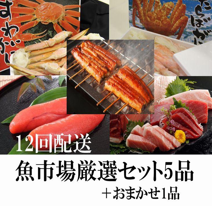 【ふるさと納税】【S-004】魚市場厳選セットA-3【12ヶ月連続お届け定期便】