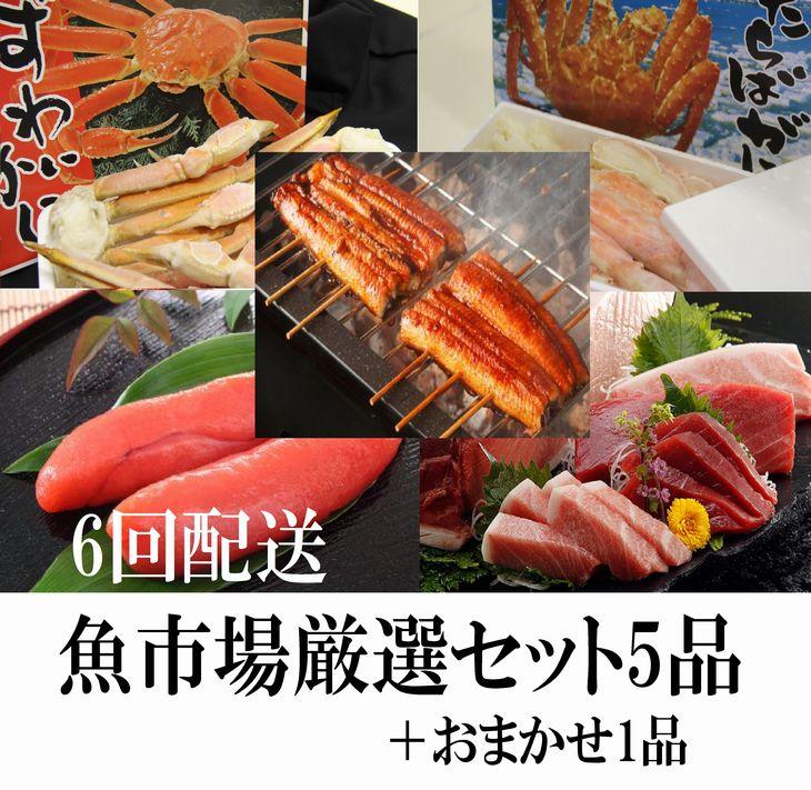 【ふるさと納税】【N5-003】魚市場厳選セットB-3【6ヶ月連続お届け定期便】