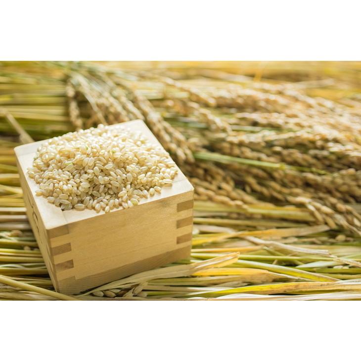 【ふるさと納税】2018年秋収穫分 福岡県産ヒノヒカリ【玄米】4kg