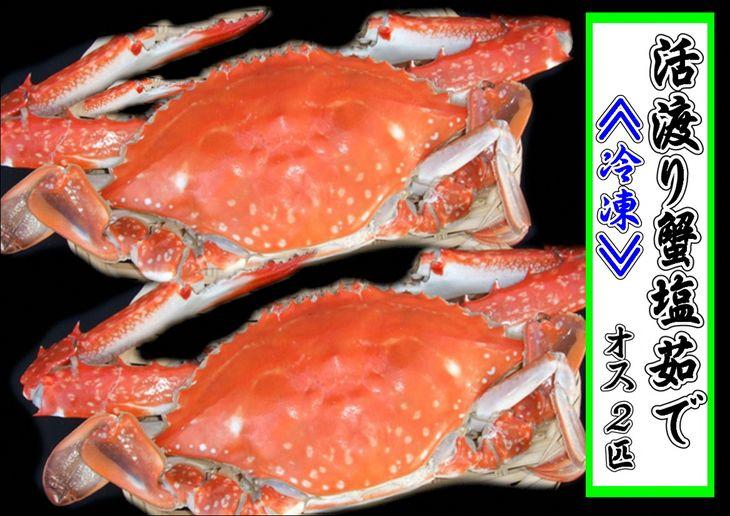 【ふるさと納税】豊前海産活渡り蟹塩茹で 大 オス2匹