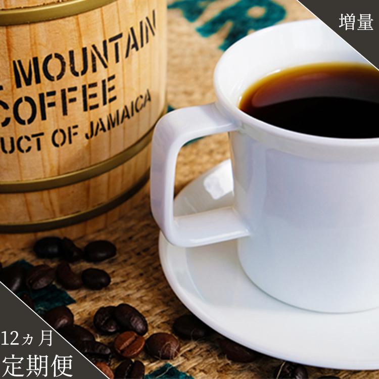 【ふるさと納税】<定期便>珈琲の王様 ブルーマウンテン ストレート 12ヵ月(豆)【増量】