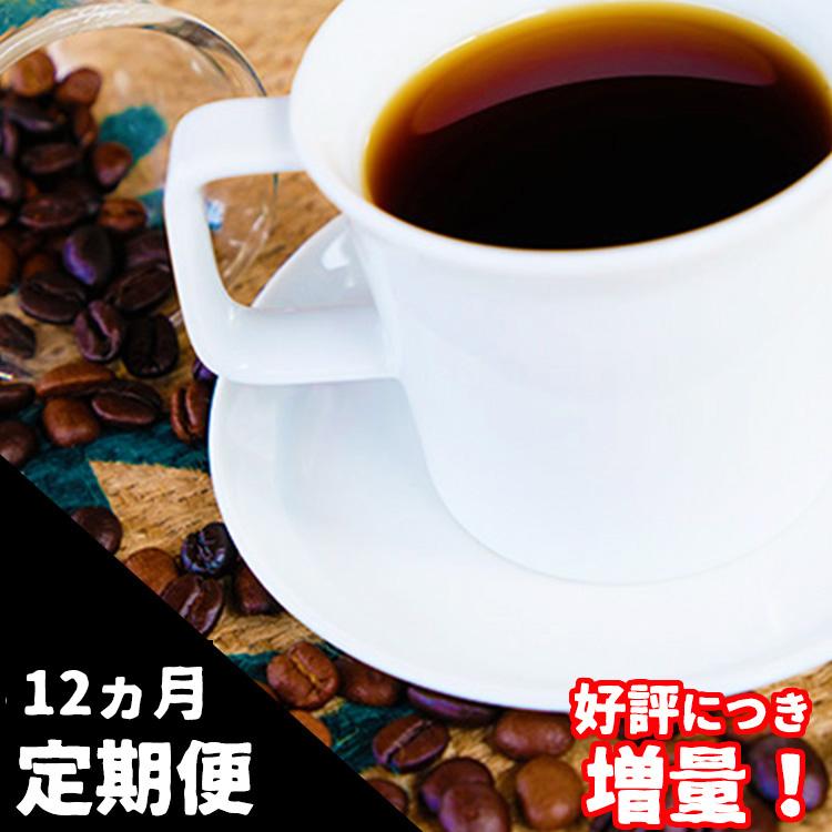 【ふるさと納税】自家焙煎 Morrow珈琲 12ヵ月定期便(豆)【増量版】