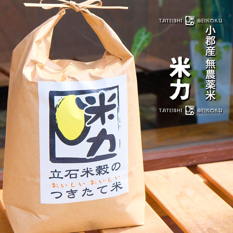 福岡県エコ認証白米 【ふるさと納税】農薬・化学肥料無使用 米力【3ヵ月定期便】