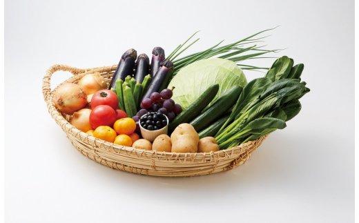 【ふるさと納税】MB53_お試し3ヵ月定期便「むなかた旬のお任せセット(旬のフルーツ1品・野菜7~8品)」
