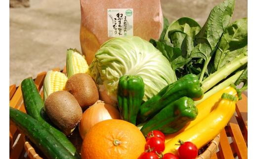 【ふるさと納税】KA0263_【9~11品】むなかた旬のお任せセット(野菜・フルーツ・お米)