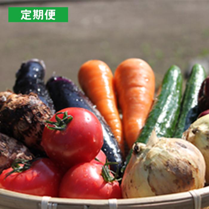 ふるさと納税 好評受付中 激安通販ショッピング 月2回定期便 UIC 1ヶ月2回×3ヶ月 名水うきはの無農薬減農薬お野菜セット
