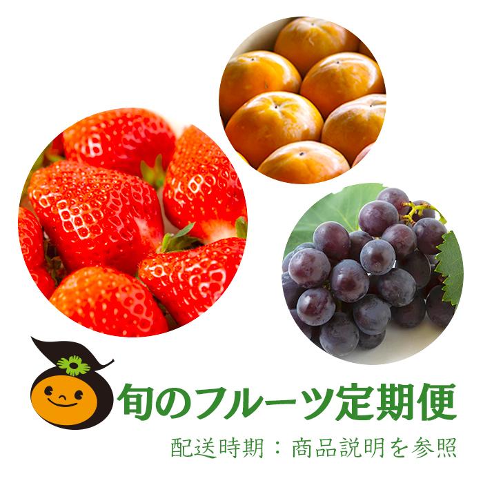 【ふるさと納税】旬のフルーツ定期便