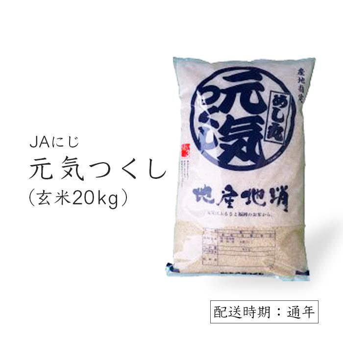 【ふるさと納税】JAにじ 元気つくし玄米20kg