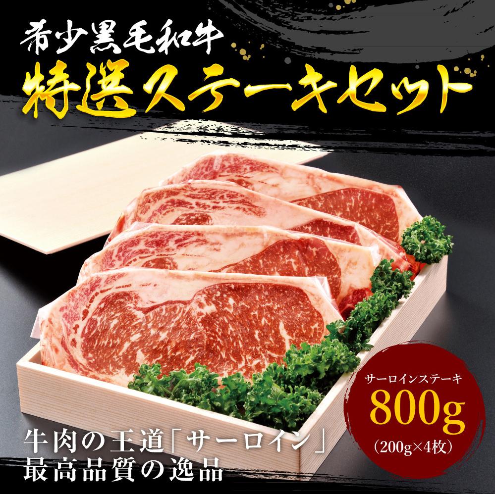 【ふるさと納税】国産 黒毛和牛 特選ステーキセット 800g 送料無料 サーロイン 和牛 牛 精肉