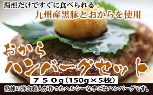 【ふるさと納税】A369.九州産黒豚おからハンバーグセット