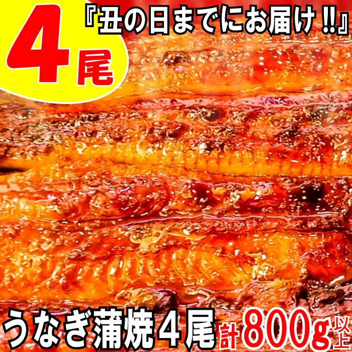 福岡県新宮町 【ふるさと納税】A598.『丑の日までにお届け!!』う...