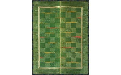 【ふるさと納税】ほづみDX(191×250)(グリーン) 02-BH-0105r