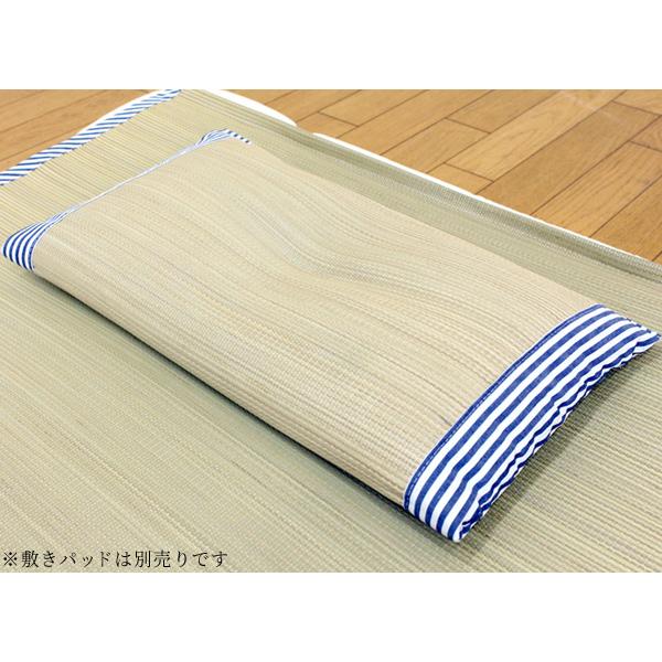 【ふるさと納税】ひやさら素肌草プレスい草平枕 02-AA-0101r