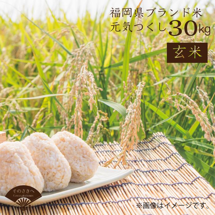 【ふるさと納税】 福岡県認定 地域資源 「 元気つくし」 30kg (玄米) 送料込