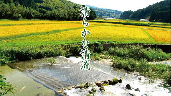 【ふるさと納税】R−012.【定期便12回】富士町産「夢しずく」