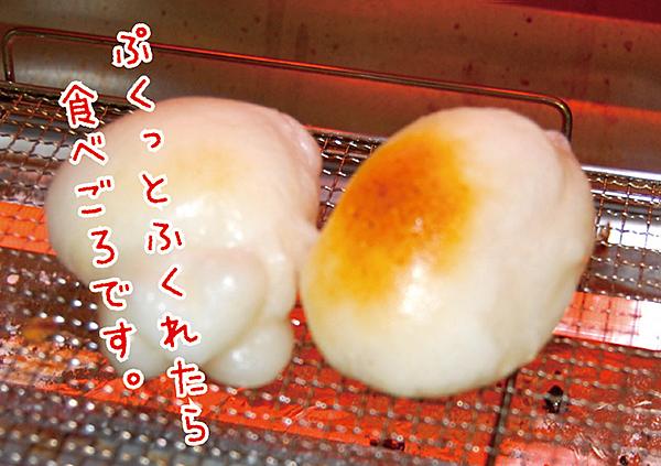 【ふるさと納税】B−134.お正月用杵つき丸餅8P