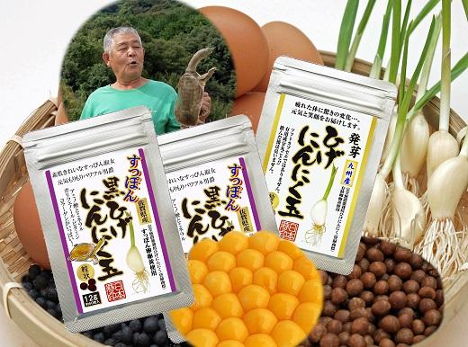 【ふるさと納税】E-029.佐賀の手作りひげにんにく卵黄3袋セット