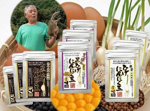 【ふるさと納税】H-008.佐賀の手作りひげにんにく卵黄9袋セット