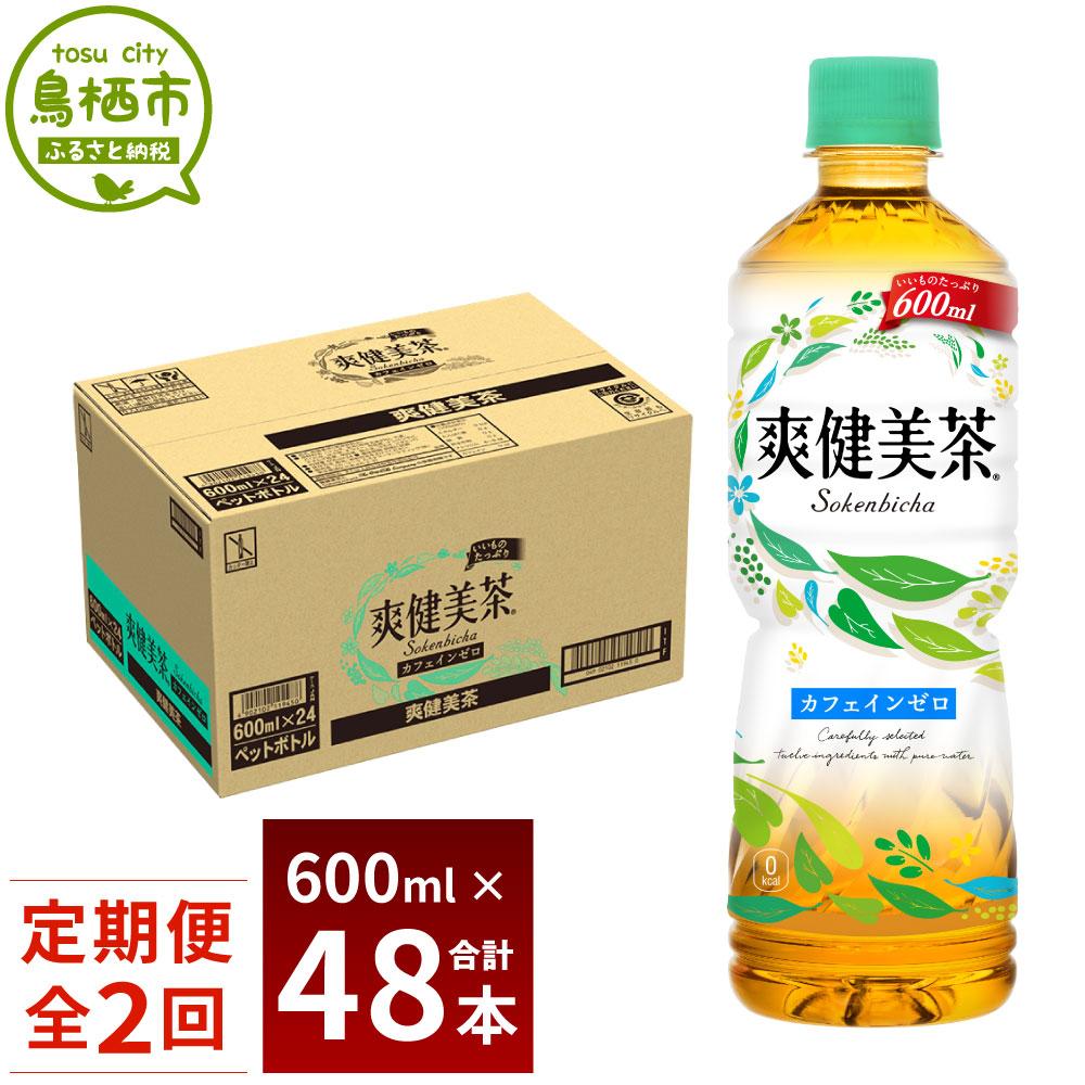 【ふるさと納税】13-17 爽健美茶600ml 1ケース 2か月定期便