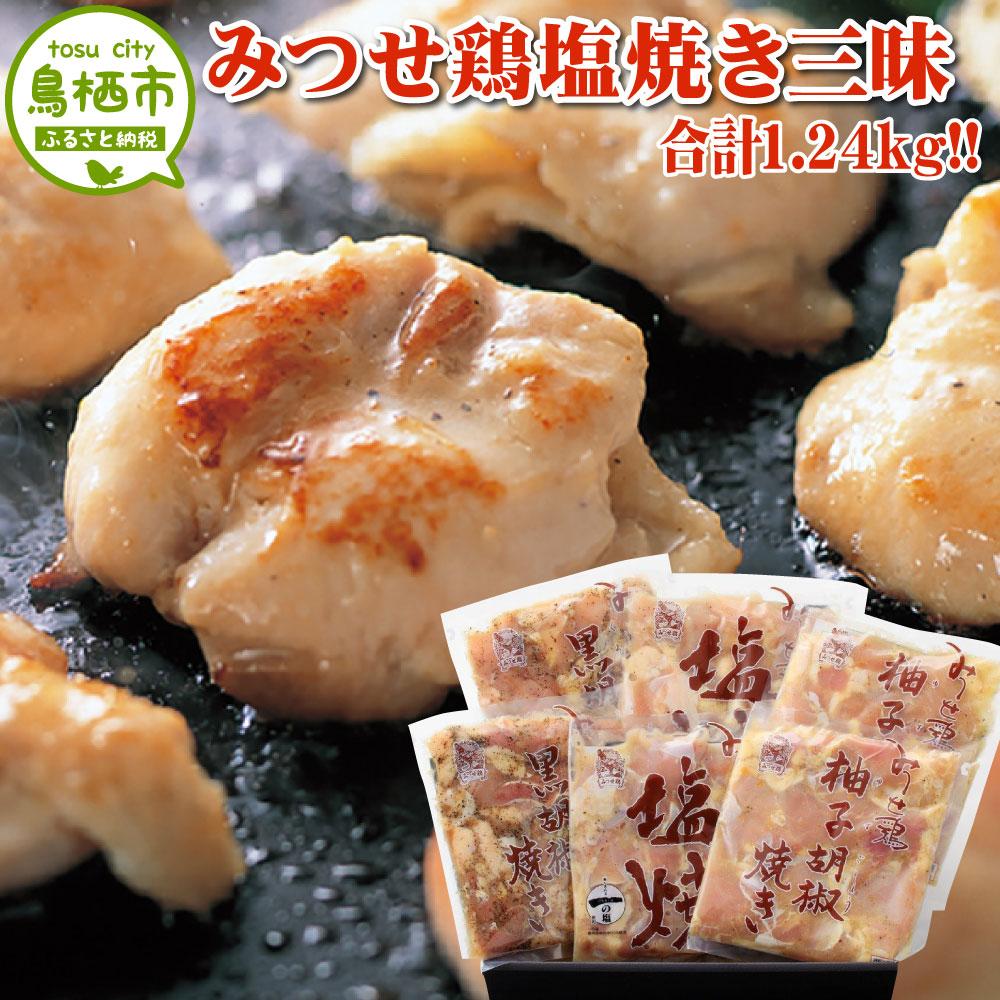 【ふるさと納税】14-12 みつせ鶏 塩焼き三昧