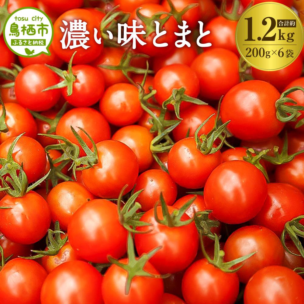 【ふるさと納税】8-03 佐賀県鳥栖産ミニトマト「濃い味とまと」200g×6袋