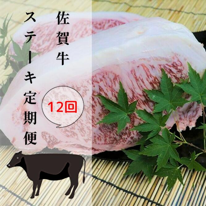 佐賀牛のA5ランクステーキ肉をたらふく召し上がれ ふるさと納税 g-5 年12回 付与 メイドイン佐賀A5ステーキ定期便 3.6kg メーカー直売