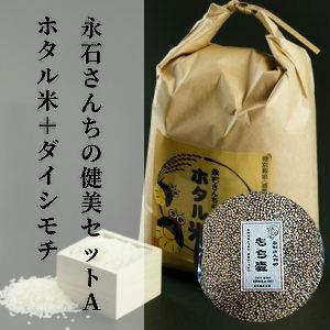 安心 安全のホタル米ともち麦のセットを2回お届けします メーカー公式ショップ ふるさと納税 d-45 永石さんちの健美セットA 無料サンプルOK ホタル米 計6kg×2回 令和2年産 ダイシモチ