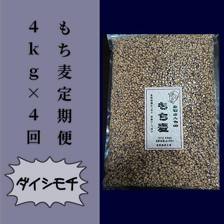 安心 安全のもち麦を4回お届けする定期便です ふるさと納税 e-30 永石さんちのもち麦 日本メーカー新品 定期便 ダイシモチ 4kg×4回 全店販売中