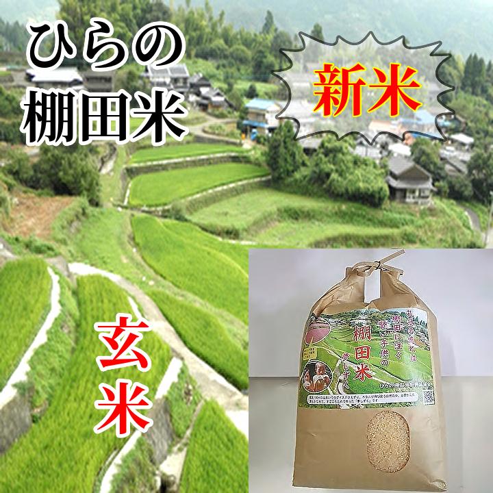 清らかな水と春のれんげ草を肥料として育てられた棚田米です お得クーポン発行中 ふるさと納税 c-86 令和3年新米 現品 夢しずく 20kg 玄米10kg×2袋 ひらの棚田米
