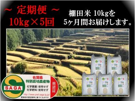 農薬 化学肥料不使用のお米です 安心安全な特A米の定期便です ふるさと納税 l-1 品質保証 新米予約 定期便 賜物 精米 しょうちゃんの棚田米 特A夢しずく 化学肥料不使用 合計50kg 10kg×5回