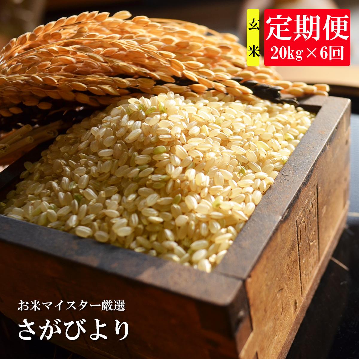 【ふるさと納税】R-2【特A・1等米】《6ヶ月定期便》鹿島市産さがびより 玄米(毎月20kg×6回)