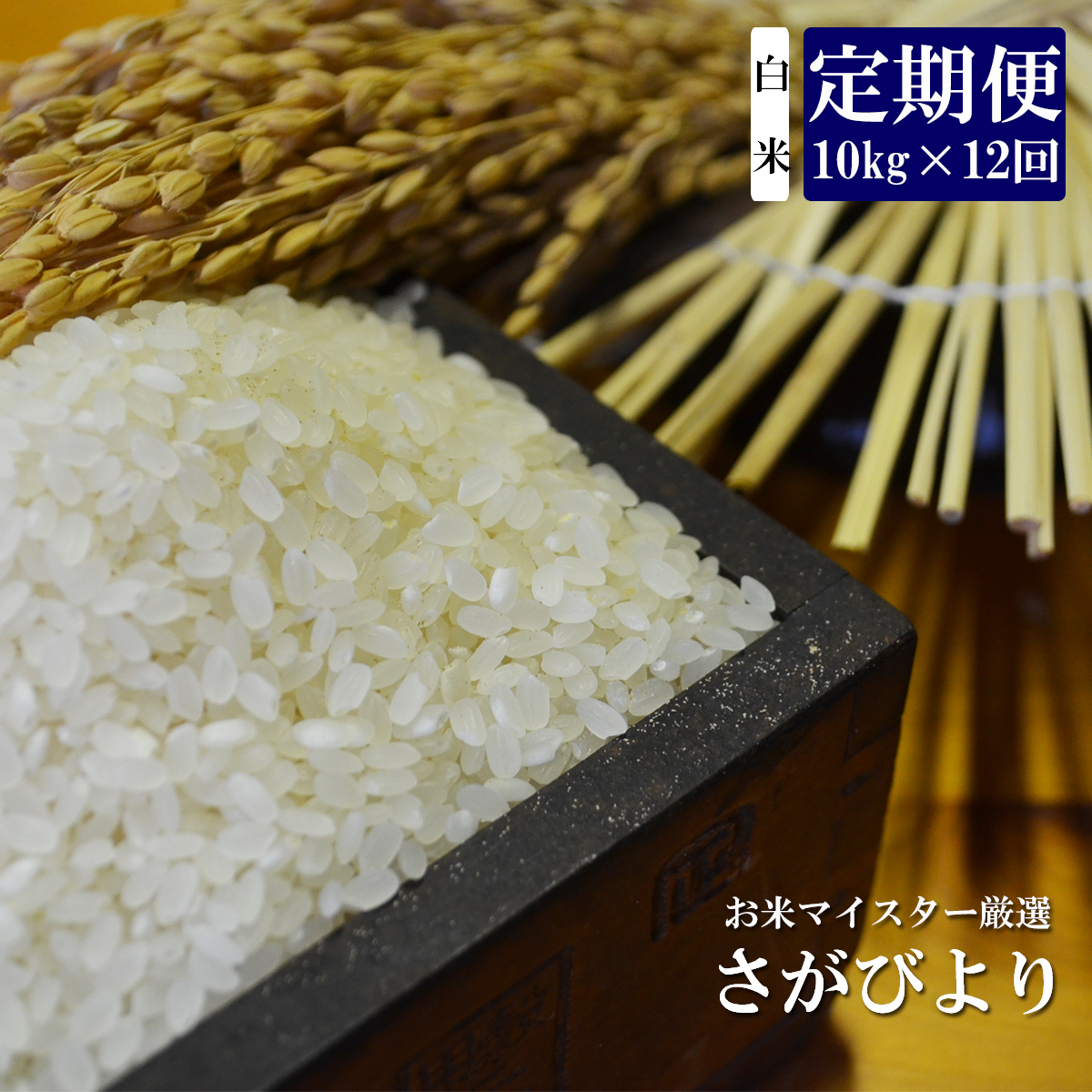 【ふるさと納税】S-1 《12ヶ月定期便》鹿島市産さがびより 白米(毎月10kg×12回)