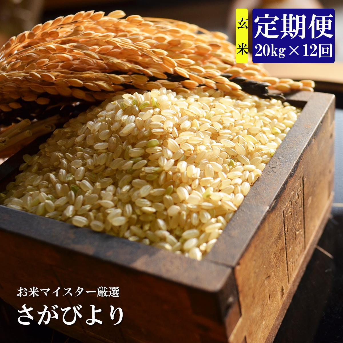 【ふるさと納税】V-12 《12ヶ月定期便》鹿島市産さがびより 玄米(毎月20kg×12回)