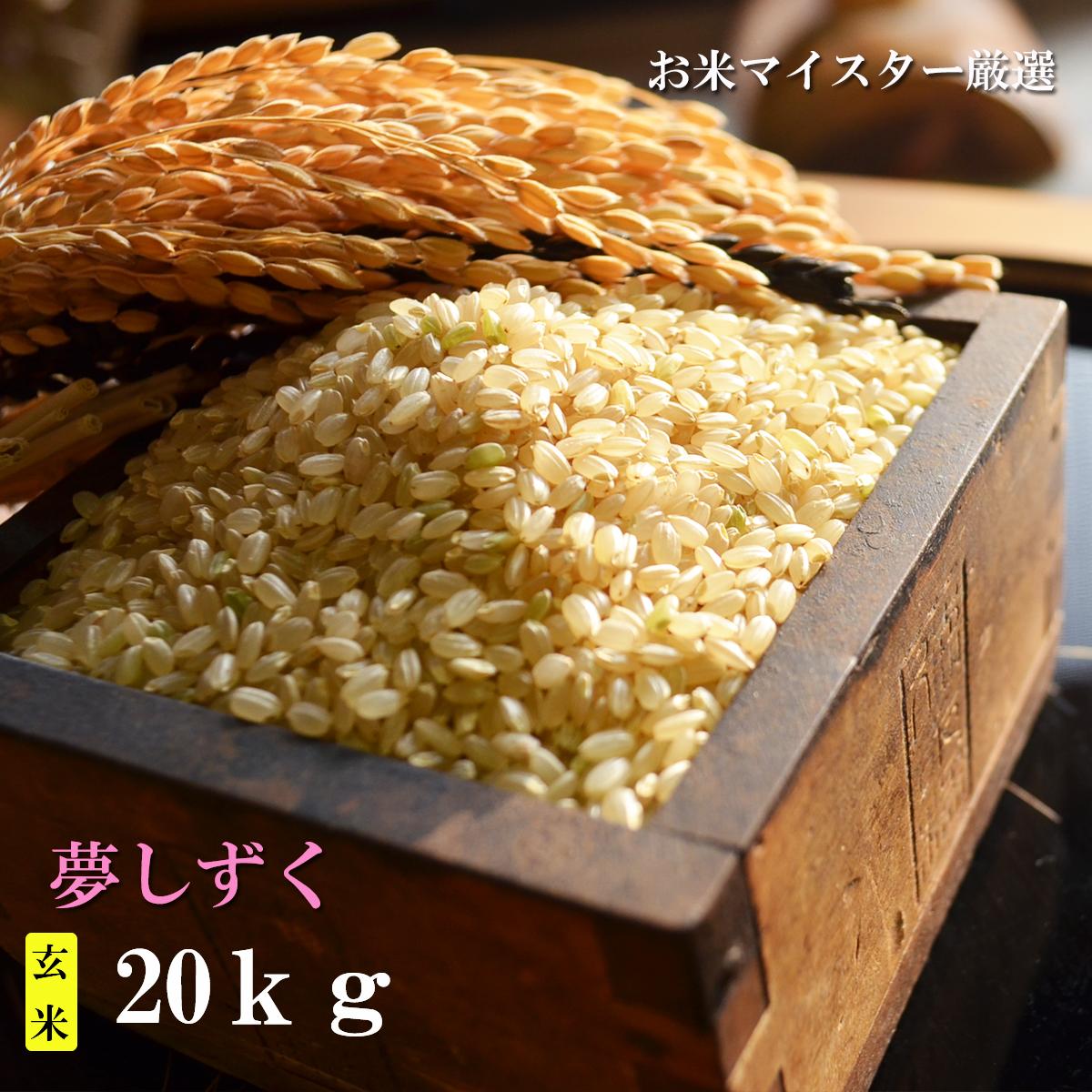 【ふるさと納税】D-31 【特A】鹿島市産夢しずく 玄米20kg