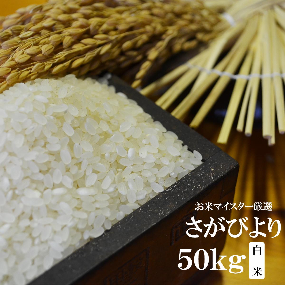 【ふるさと納税】H-3【特A・令和元年産米】鹿島市産厳選さがびより 白米50kg