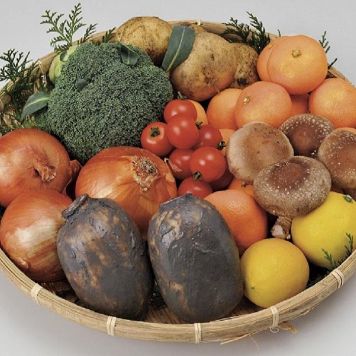 【ふるさと納税】F-23 【2020年4月から6ヶ月お届け】肥前の国のお野菜定期便