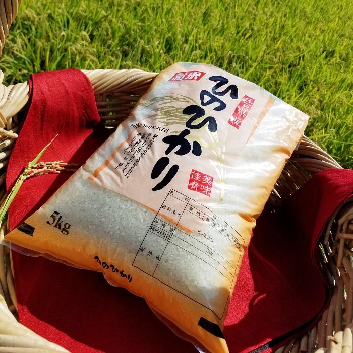【ふるさと納税】 B-169 鹿島市産ひのひかり 10kg(5kg×2袋)