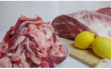 【ふるさと納税】B-111 佐賀和牛 すじ肉 1kg