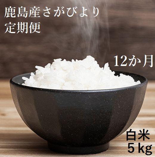 【ふるさと納税】L-28【新鮮米】佐賀県鹿島産さがびより白米5kg定期便(12か月お届け)