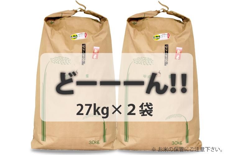 【ふるさと納税】 佐賀ブランド米「さがびより」54kg(白米)