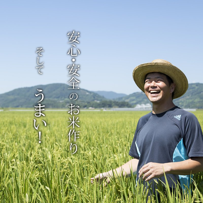 【ふるさと納税】【定期便】 (12ヶ月連続お届け) しもむら農園直送 お米の定期便 5kg×12回