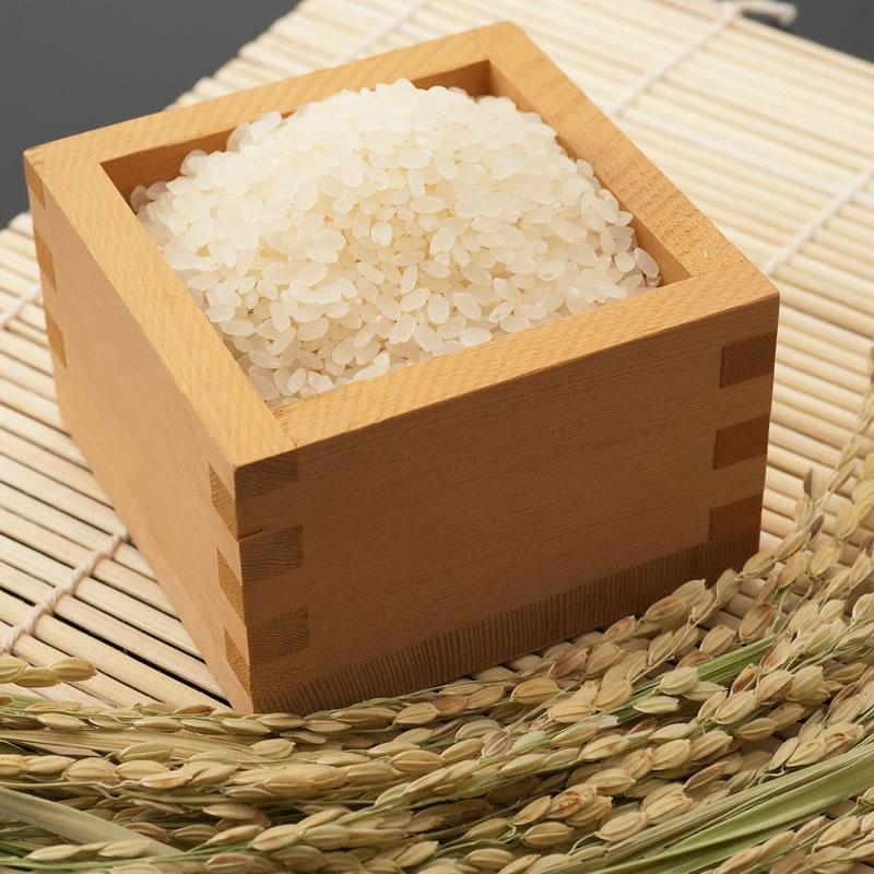 【ふるさと納税】佐賀ブランド米「夢しずく」54kg(白米)