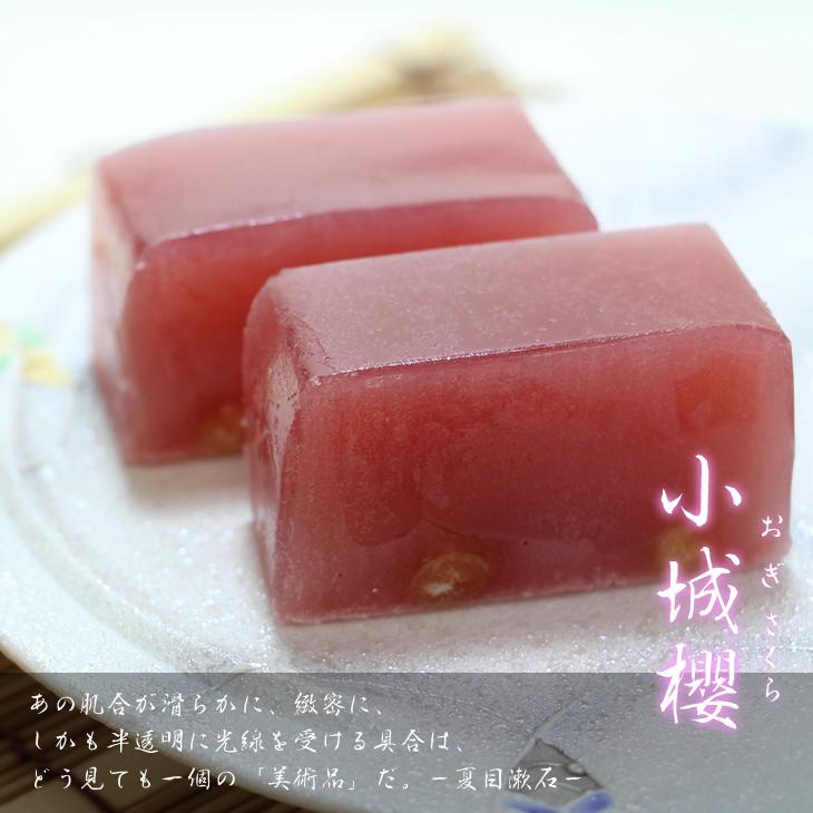 【ふるさと納税】村岡総本舗 伝統製法羊羹「小城櫻(おぎざくら)」
