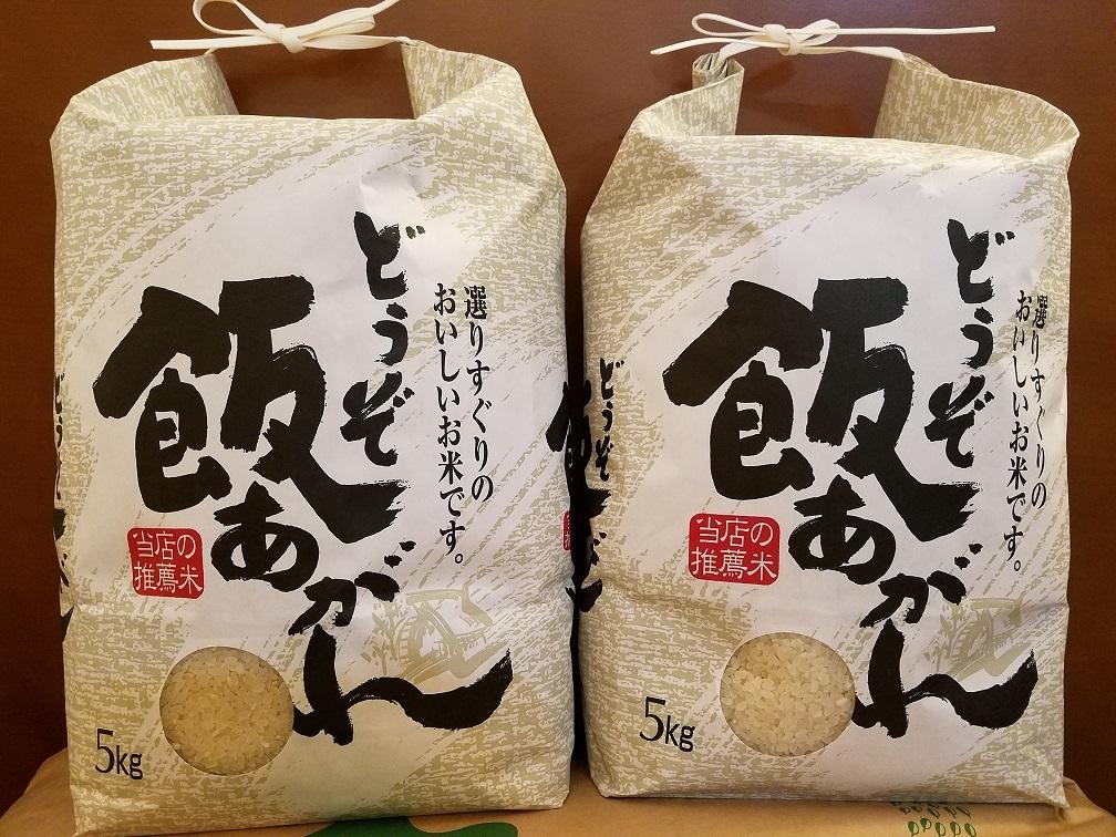 【ふるさと納税】令和元年産 ひのひかり 5kg×2個 (H061106)
