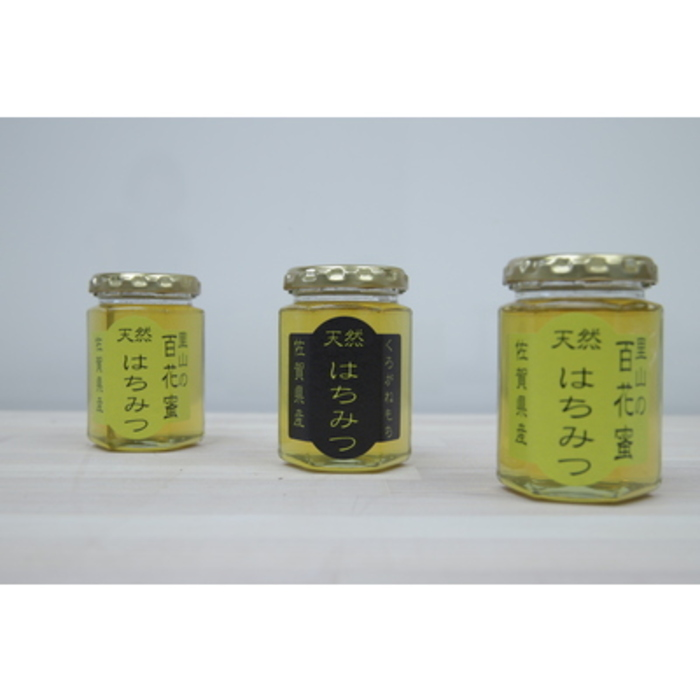 【ふるさと納税】佐賀県神埼産はちみつ510g (H050113)