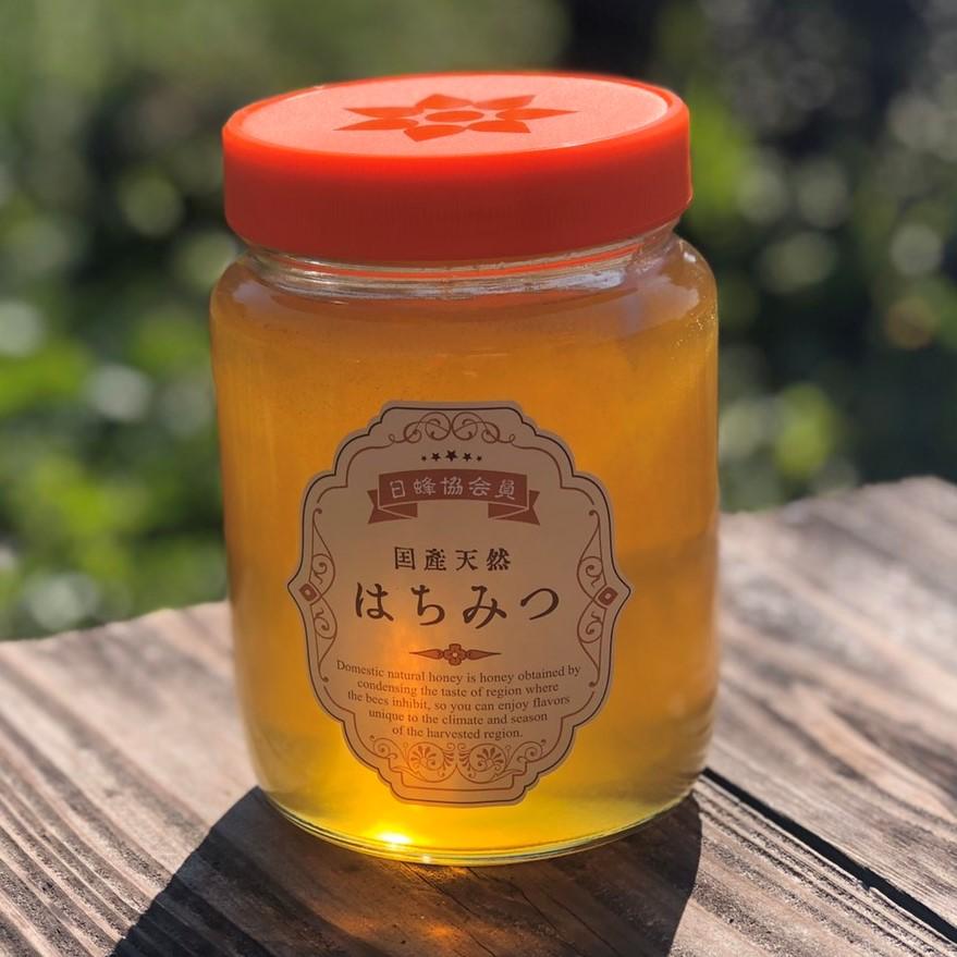 【ふるさと納税】佐賀県産ハチミツ600g&巣みつ【plan】[FBF020]
