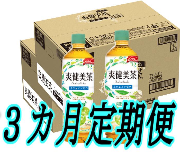 【ふるさと納税】C-065 【3カ月定期便】爽健美茶600mlPET(2ケース×3回)