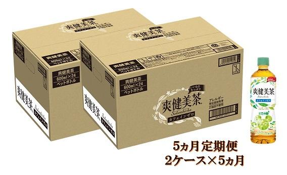 【ふるさと納税】E-031 【5カ月定期便】爽健美茶600mlPET(2ケース×5回)